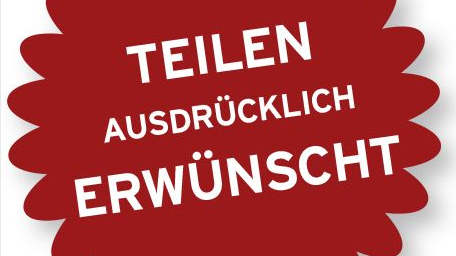"""Ausschnitt Umschlag E-Book """"Firnkes Seo und Social Media im Einsatz"""" (Quelle: Hansa Fachbuchverlag)"""