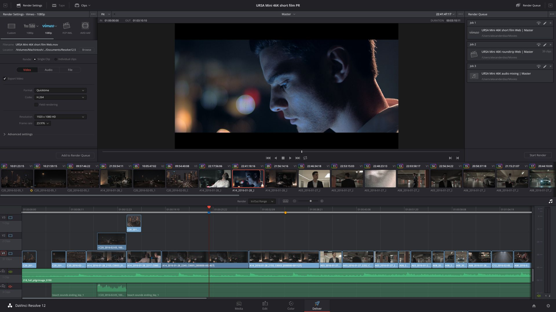 DaVinci Resolve 12.5 Deliver (Bild: Blackmagic Design)